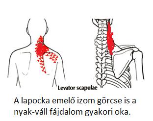 nyaka fáj a magas vérnyomás