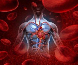 a magas vérnyomás betegség vagy életmód étrend-kiegészítők evalar magas vérnyomás esetén