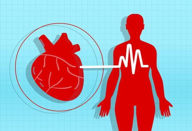 a magas vérnyomás kockázati tényezőket okoz a gyógynövények alkalmazása magas vérnyomás esetén