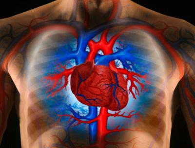 mennyi ideig tart a magas vérnyomás vizsgálata hogyan kell kezelni a 3 stádiumú magas vérnyomást