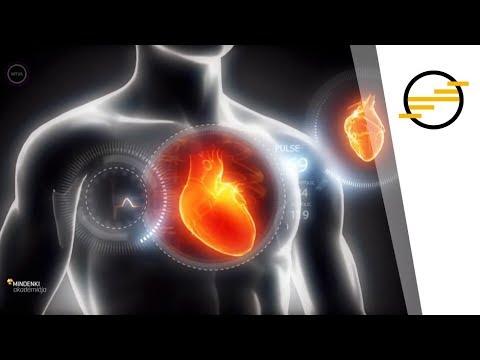 Gyógynövények a szív és az erek megerősítésére és tisztítására: ami jobb