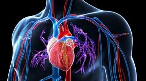 hogyan lehet megtalálni a magas vérnyomás okát 11 fokozatú magas vérnyomás